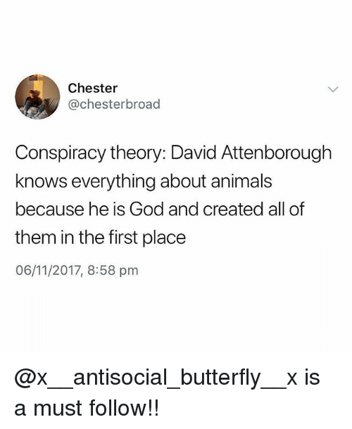 Animals, God, and Memes: Chester  @chesterbroad  Conspiracy theory: David Attenborough  knows everything about animals  because he is God and created all of  them in the first place  06/11/2017, 8:58 pnm @x__antisocial_butterfly__x is a must follow!!