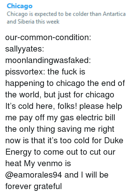 Chicago, Energy, and Tumblr: Chicago  Chicago is expected to be colder than Antartica  and Siberia this week our-common-condition:  sallyyates:  moonlandingwasfaked:  pissvortex:  the fuck is happening to chicago  the end of the world, but just for chicago   It's cold here, folks!  please help me pay off my gas  electric bill the only thing saving me right now is that it's too cold for Duke Energy to come out to cut our heat    My venmo is @eamorales94 and I will be forever grateful