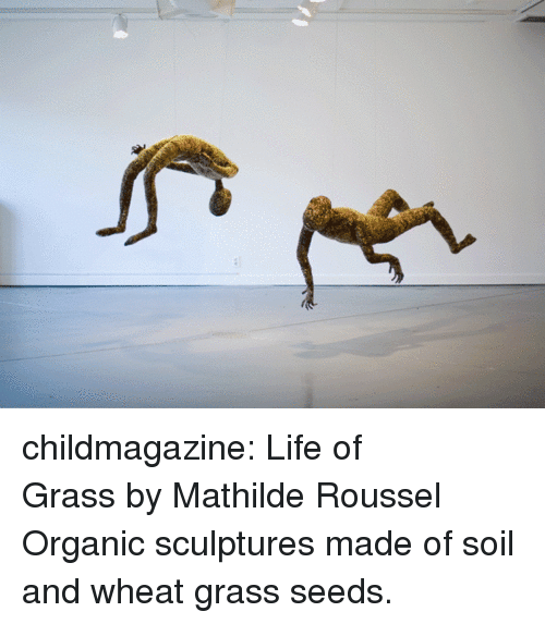 Life, Tumblr, and Blog: childmagazine: Life of Grass by Mathilde Roussel Organic sculptures made of soil and wheat grass seeds.
