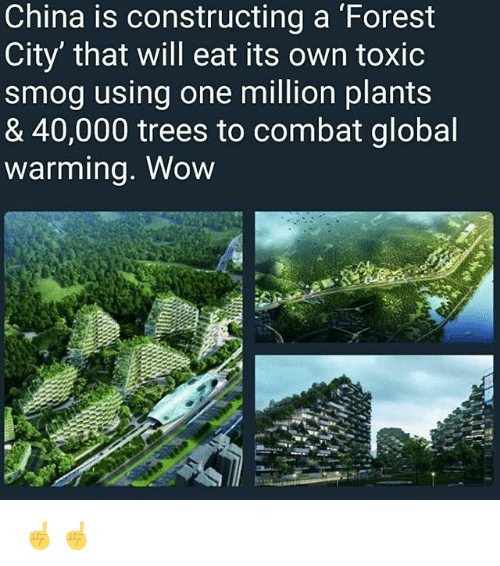 smog: China is constructing a Forest  City' that will eat its own toxic  smog using one million plants  & 40,000 trees to combat global  warmina. Wow ☝️☝️