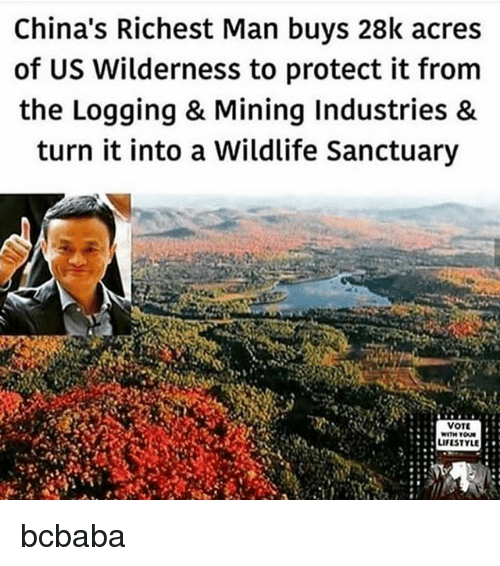 Memes, Lifestyle, and 🤖: China's Richest Man buys 28k acres  of US Wilderness to protect it from  the Logging & Mining Industries &  turn it into a Wildlife Sanctuary  VOT  LIFESTYLE bcbaba