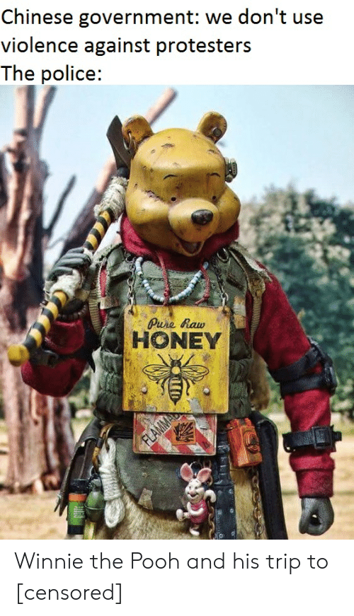 Police, Reddit, and Winnie the Pooh: Chinese government: we don't use  violence against protesters  The police:  Pure Raw  HONEY Winnie the Pooh and his trip to [censored]