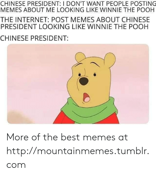 Winnie the Pooh: CHINESE PRESIDENT: I DON'T WANT PEOPLE POSTING  MEMES ABOUT ME LOOKING LIKE WINNIE THE POOH  THE INTERNET: POST MEMES ABOUT CHINESE  PRESIDENT LOOKING LIKE WINNIE THE POOH  CHINESE PRESIDENT: More of the best memes at http://mountainmemes.tumblr.com