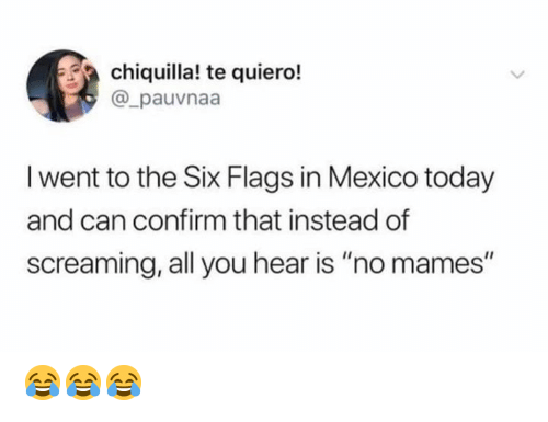 "Memes, Mexico, and Six Flags: chiquilla! te quiero!  @_pauvnaa  I went to the Six Flags in Mexico today  and can confirm that instead of  screaming, all you hear is ""no mames"" 😂😂😂"