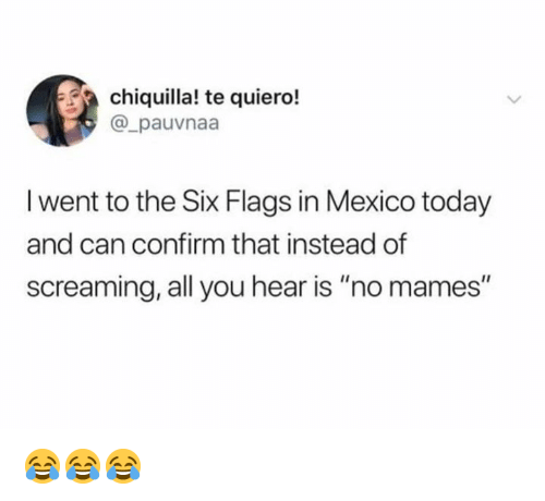 "Memes, Mexico, and Six Flags: chiquilla! te quiero!  @_pauvnaa  l went to the Six Flags in Mexico today  and can confirm that instead of  screaming, all you hear is ""no mames"" 😂😂😂"