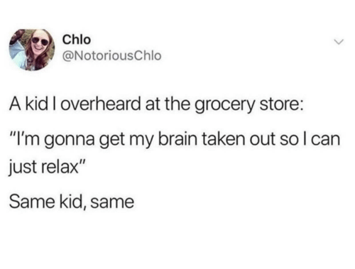 """just relax: Chlo  @NotoriousChlo  A kid I overheard at the grocery store:  """"I'm gonna get my brain taken out so I can  just relax""""  Same kid, same"""