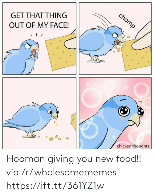 Food, Chicken, and Via: chomp  GET THAT THING  OUT OF MY FACE!  chicken thoughts Hooman giving you new food!! via /r/wholesomememes https://ift.tt/361YZ1w