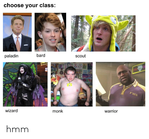 Paladin, Bard, and Warrior: choose your class:  scout  bard  paladin  FHS  warrior  monk  wizard hmm