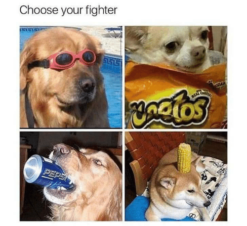 fighter: Choose your fighter