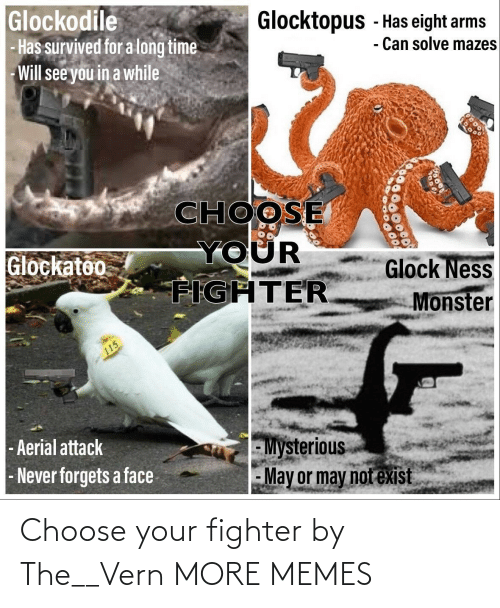 Choose Your Fighter: Choose your fighter by The__Vern MORE MEMES