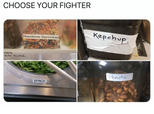 Choose Your Fighter: CHOOSE YOUR FIGHTER  Kepehup  Ranibow Sprimkle  enuts  SPINCH