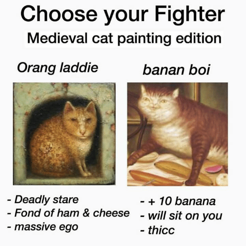Choose Your Fighter: Choose your Fighter  Medieval cat painting edition  Orang laddie  banan boi  Deadly stare  - Fond of ham & cheese  - massive ego  - 10 banana  - will sit on you  - thicc