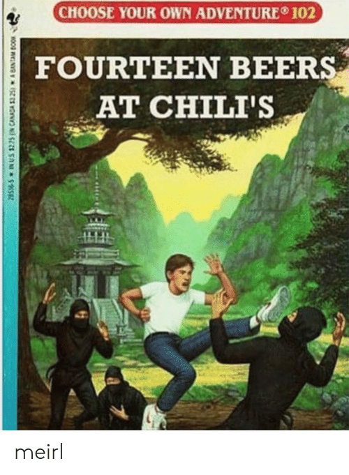 Choose Your: CHOOSE YOUR OWN ADVENTURE 102  FOURTEEN BEERS  AT CHILI'S  28S-S IN US $225N CANADA $325) A BANTAM BOOK meirl