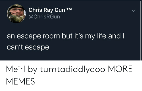 gun: Chris Ray Gun ™  @ChrisRGun  an escape room but it's my life and I  can't escape Meirl by tumtadiddlydoo MORE MEMES