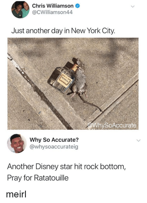 Disney, New York, and Ratatouille: Chris Williamson  @CWilliamson44  Just another day in New York City.  WhySoAccurate  Why So Accurate?  @whysoaccurateig  Another Disney star hit rock bottom,  Pray for Ratatouille meirl