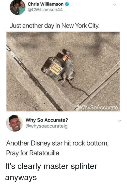 Disney, Funny, and New York: Chris Williamson  @CWilliamson44  Just another day in New York City  WhySoAccurate  Why So Accurate?  @whysoaccurateig  Another Disney star hit rock bottom  Pray for Ratatouille