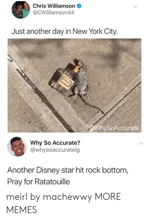 Dank, Disney, and Memes: Chris Williamson  @CWilliamson44  Just another day in New York City.  WhySoAccurate  Why So Accurate?  @whysoaccurateig  Another Disney star hit rock bottom,  Pray for Ratatouille meirl by machewwy MORE MEMES