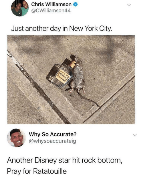Disney, New York, and Ratatouille: Chris Williamson  @CWilliamson44  Just another day in New York City  Why So Accurate?  @whysoaccurateig  Another Disney star hit rock bottom,  Pray for Ratatouille