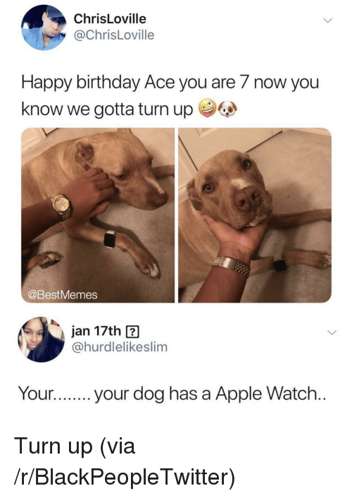 Apple, Apple Watch, and Birthday: ChrisLoville  @ChrisLoville  Happy birthday Ace you are 7 now you  know we gotta turn up  @BestMemes  jan 17th ?  @hurdlelikeslim  Your.your dog has a Apple Watch Turn up (via /r/BlackPeopleTwitter)