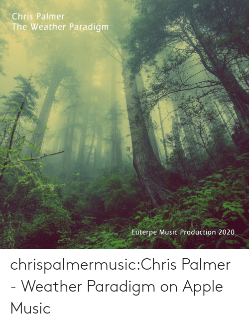 amp: chrispalmermusic:Chris Palmer - Weather Paradigm on Apple Music