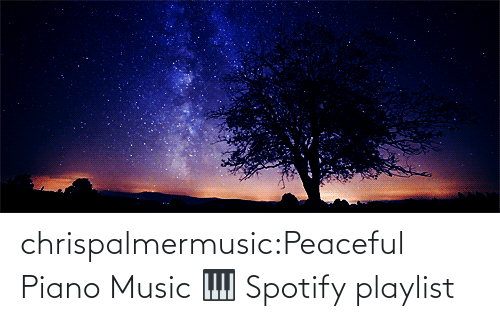 Music: chrispalmermusic:Peaceful Piano Music 🎹 Spotify playlist