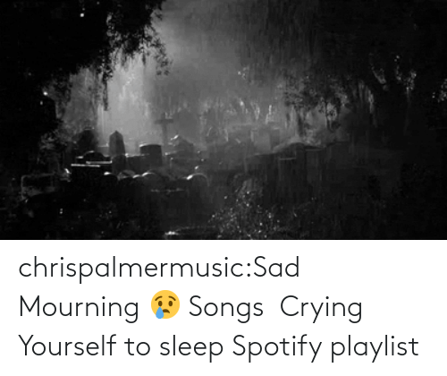 Yourself: chrispalmermusic:Sad Mourning 😢 Songs  Crying Yourself to sleep Spotify playlist
