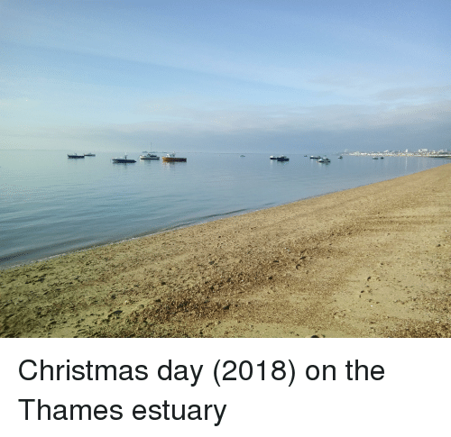 Christmas, Day, and Estuary