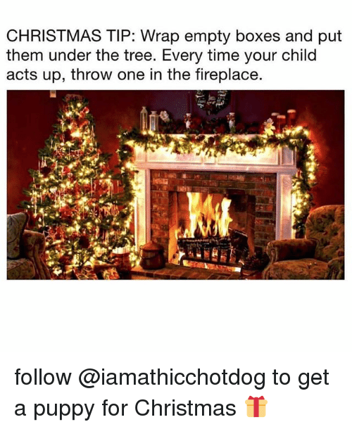 Christmas, Puppy, and Time: CHRISTMAS TIP: Wrap empty boxes and put  them under the tree. Every time your child  acts up, throw one in the fireplace. follow @iamathicchotdog to get a puppy for Christmas 🎁