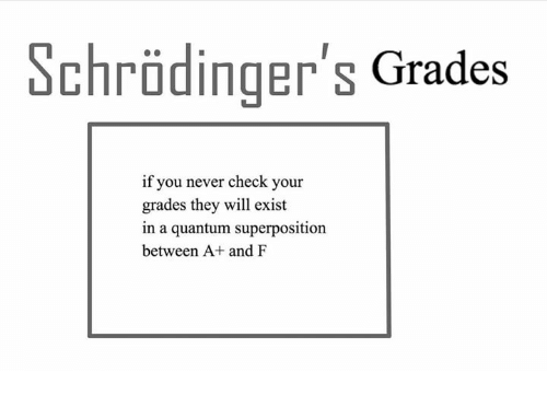 Memes, Never, and 🤖: chrodinger s Grades  if you never check your  grades they will exist  in a quantum superposition  between A+ and F