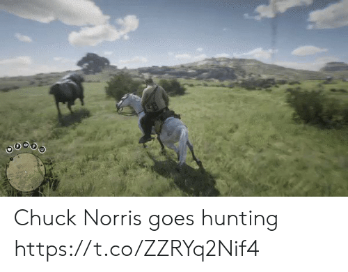 Chuck Norris, Hunting, and Chuck: Chuck Norris goes hunting https://t.co/ZZRYq2Nif4