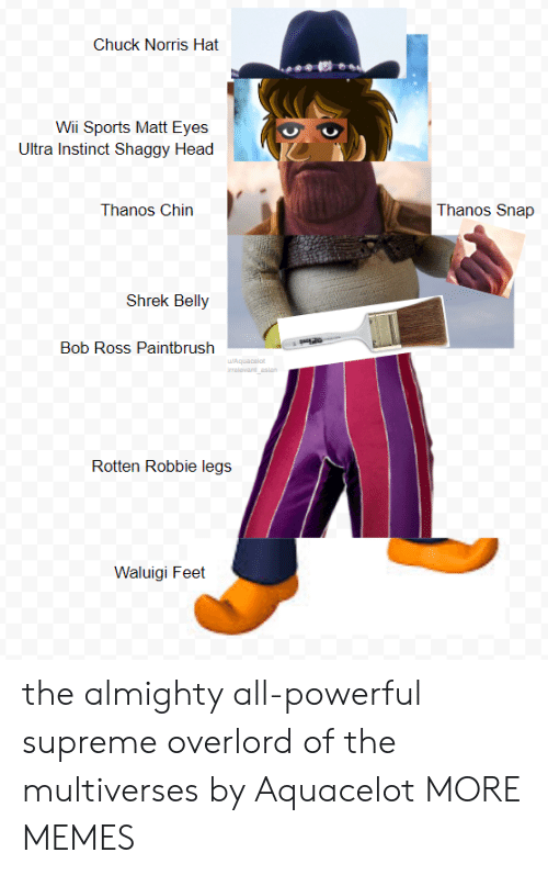 almighty: Chuck Norris Hat  Wii Sports Matt Eyes  Ultra Instinct Shaggy Head  Thanos Chin  Thanos Snap  Shrek Belly  Bob Ross Paintbrush  Rotten Robbie legs j  Waluigi Feet the almighty all-powerful supreme overlord of the multiverses by Aquacelot MORE MEMES
