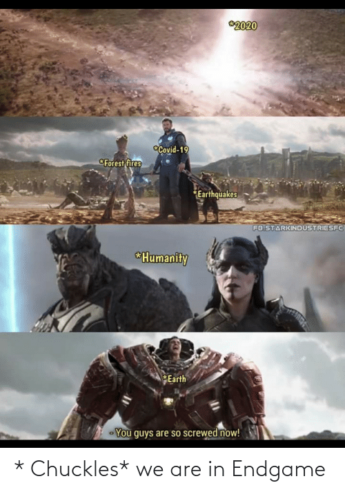 endgame: * Chuckles* we are in Endgame