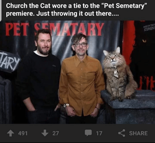 """Church, Memes, and 🤖: Church the Cat wore a tie to the """"Pet Semetary""""  premiere. Just throwing it out there....  PET CEM İTARY  个491  27  17  SHARE"""