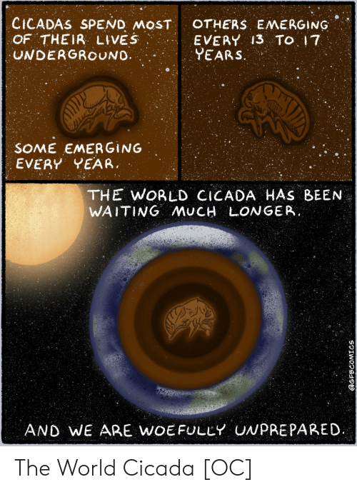 Their Lives: CICADAS SPEND MOST  OF THEIR LIVES  UNDERGROUNO  OTHERS EMERGING  EVERY 13 TO 17  YEARS.  SOME EMERGING  EVERY YEAR  THE WORLD CICADA HAS BEEN  WAITING AMUCH LONGER.  AND WE ARE WOEFULLY UNPREPARED  @GFBCOMICS The World Cicada [OC]
