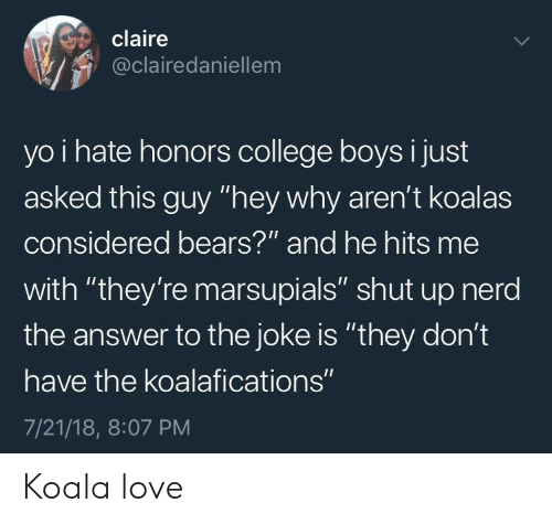 "koala: claire  @clairedaniellem  yo i hate honors college boys i just  asked this guy ""hey why aren't koalas  considered bears?""' and he hits me  with ""they're marsupials"" shut up nerd  the answer to the joke is ""they don't  have the koalafications""  7/21/18, 8:07 PM Koala love"