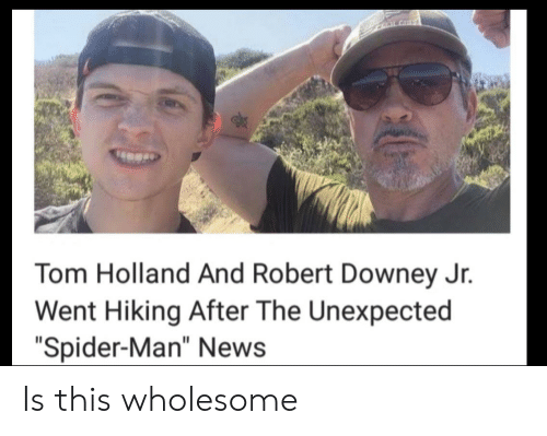 "News, Robert Downey Jr., and Spider: CLALGHT  Tom Holland And Robert Downey Jr.  Went Hiking After The Unexpected  ""Spider-Man"" News Is this wholesome"