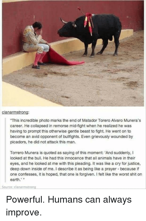 """Animals, Shit, and The Worst: clanarmstrong:  This incredible photo marks the end of Matador Torero Alvaro Munera's  career. He collapsed in remorse mid-fight when he realized he was  having to prompt this otherwise gentle beast to fight. He went on to  become an avid opponent of bulfights. Even grievously wounded by  picadors, he did not attack this man.  Torrero Munera is quoted as saying of this moment: 'And suddenly, I  looked at the bull. He had this innocence that all animals have in their  eyes, and he looked at me with this pleading. It was like a cry for justice,  deep down inside of me. I describe it as being like a prayer because if  one confesses, it is hoped, that one is forgiven. I felt like the worst shit on  earth.""""  Source: clanarmstrong <p>Powerful. Humans can always improve.</p>"""
