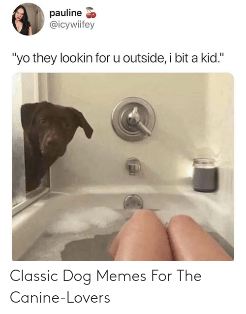 classic: Classic Dog Memes For The Canine-Lovers