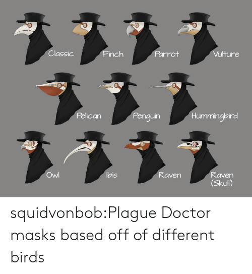 bis: Classic  Parrot  Vulture  Finch  Pelican  Penguin  Hummingbird  ヌ331  Owl  bis  Raven  Raven  (Skull) squidvonbob:Plague Doctor masks based off of different birds
