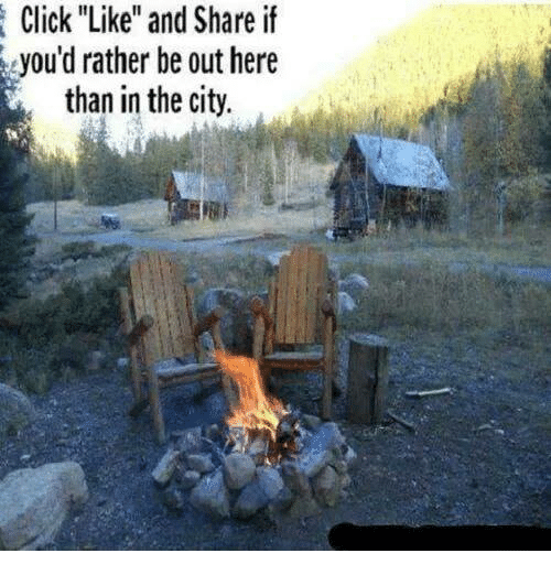 """Click, Memes, and 🤖: Click """"Like"""" and Share if  you'd rather be out here  than in the city."""
