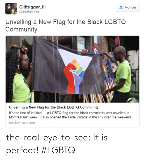Community, Target, and Tumblr: Cliftrigger, ll  @seabethree  Follow  Unveiling a New Flag for the Black LGBTQ  Community  Unveiling a New Flag for the Black LGBTQ Community  It's the first of its kind a LGBTQ flag for the black community was unveiled in  Montreal last week. It also opened the Pride Parade in the city over the weekend.  en.daily.vice.com the-real-eye-to-see:  It is perfect! #LGBTQ