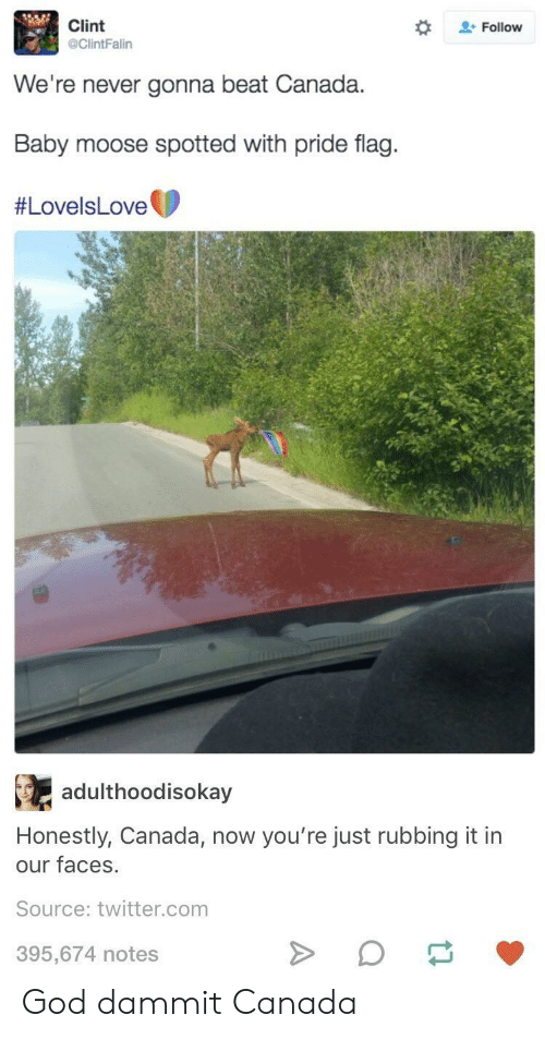 God, Twitter, and Canada: Clint  @ClintFalin  + Follow  We're never gonna beat Canada.  Baby moose spotted with pride flag.  #LovelsLove t  R.  adulthoodisokay  Honestly, Canada, now you're just rubbing it in  our faces  Source: twitter.com  395,674 notes God dammit Canada