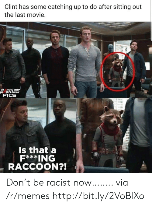 catching up: Clint has some catching up to do after sitting out  the last movie.  RVELOUS  PICS  Is that a  F***ING  RACCOON?! Don't be racist now…….. via /r/memes http://bit.ly/2VoBlXo