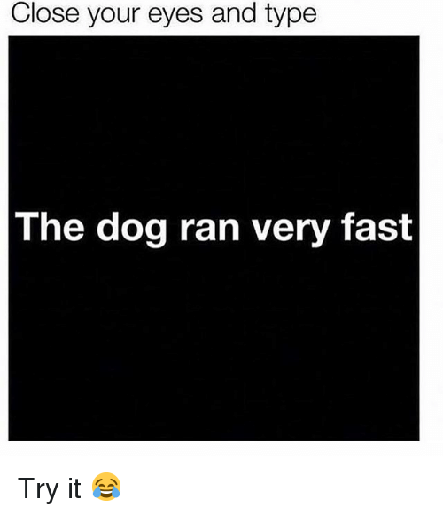 Memes, 🤖, and Dog: Close your eyes and type  The dog ran very fast Try it 😂