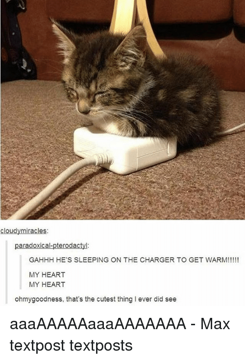 Memes, Heart, and Sleeping: cloudymiracles:  paradoxical-pterodactyl:  GAHHH HE'S SLEEPING ON THE CHARGER TO GET WARM!!!!!  MY HEART  MY HEART  ohmygoodness, that's the cutest thing I ever did see aaaAAAAAaaaAAAAAAA - Max textpost textposts