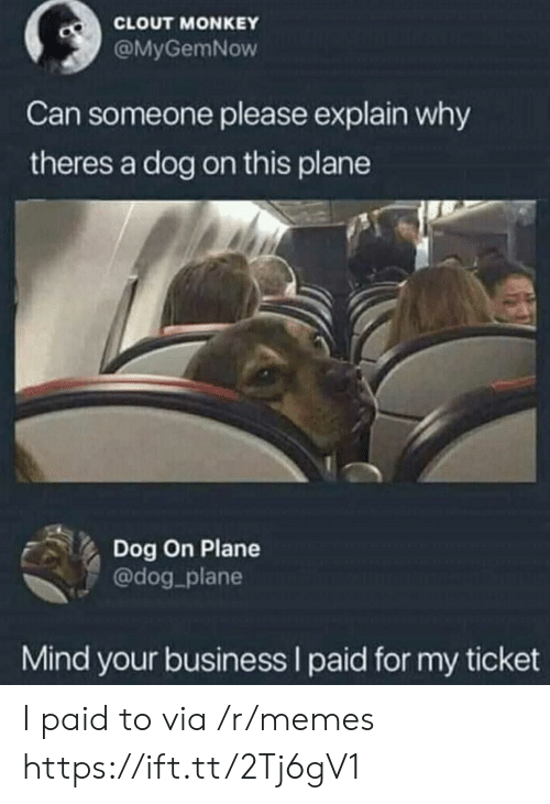 Memes, Business, and Monkey: CLOUT MONKEY  @MyGemNow  Can someone please explain why  theres a dog on this plane  Dog On Plane  @dog_plane  Mind your business I paid for my ticket I paid to via /r/memes https://ift.tt/2Tj6gV1