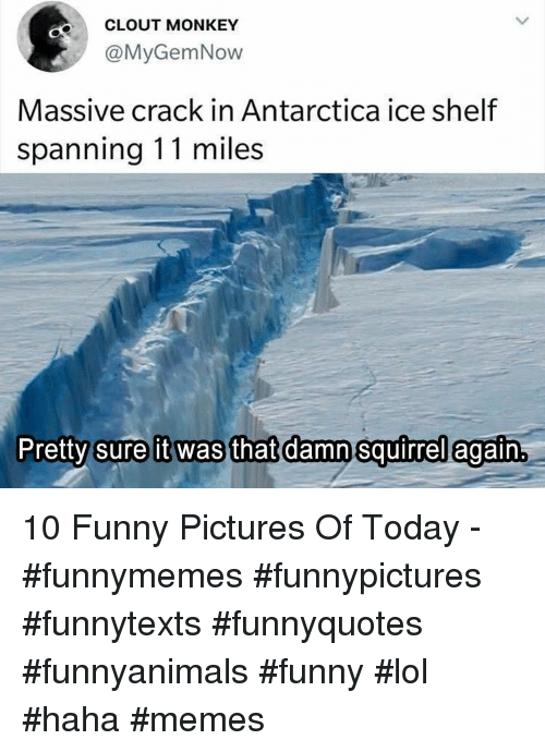 Funny Pictures Of: CLOUT MONKEY  @MyGemNow  Massive crack in Antarctica ice shelf  spanning 11 miles  Pretty sure it was that damn squirrel egaftn 10 Funny Pictures Of Today - #funnymemes #funnypictures #funnytexts #funnyquotes #funnyanimals #funny #lol #haha #memes