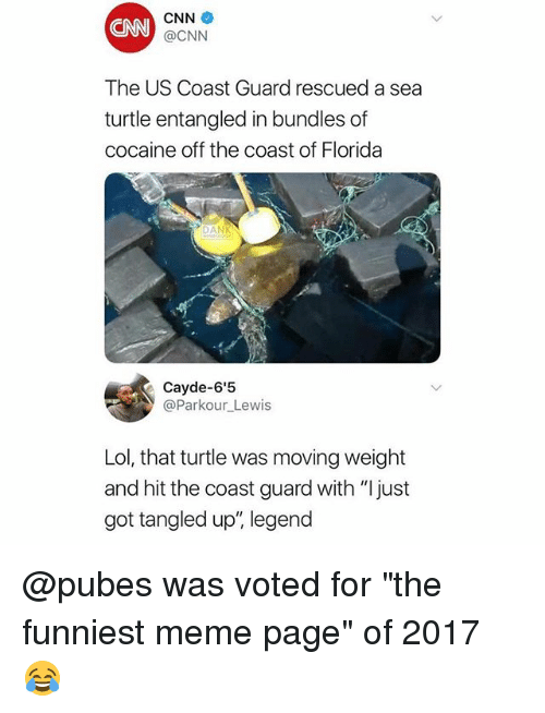 "cnn.com, Lol, and Meme: CNN  CNN  @CNN  The US Coast Guard rescued a sea  turtle entangled in bundles of  cocaine off the coast of Florida  DAN  @Parkour_Lewis  Lol, that turtle was moving weight  and hit the coast guard with ""Ijust  got tangled up"", legend @pubes was voted for ""the funniest meme page"" of 2017 😂"