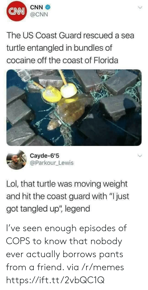 """cnn.com, Lol, and Memes: CNN  CNN  @CNN  The US Coast Guard rescued a sea  turtle entangled in bundles of  cocaine off the coast of Florida  DAN  Cayde-6'5  @Parkour_Lewis  Lol, that turtle was moving weight  and hit the coast guard with """"Ijust  got tangled up"""", legend I've seen enough episodes of COPS to know that nobody ever actually borrows pants from a friend. via /r/memes https://ift.tt/2vbQC1Q"""