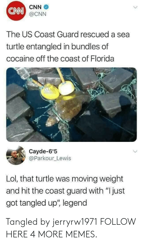 """cnn.com, Dank, and Lol: CNN  CNN  @CNN  The US Coast Guard rescued a sea  turtle entangled in bundles of  cocaine off the coast of Florida  DAN  Cayde-6'5  @Parkour_Lewis  Lol, that turtle was moving weight  and hit the coast guard with """"Ijust  got tangled up"""", legend Tangled by jerryrw1971 FOLLOW HERE 4 MORE MEMES."""